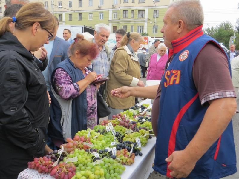 ВПензе начала работу ярмарка «Праздник урожая»